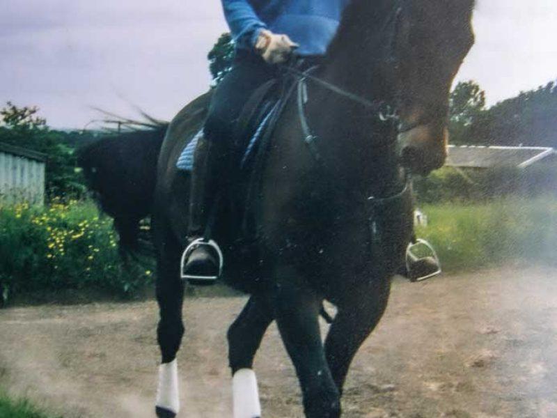 Glyn riding Giles